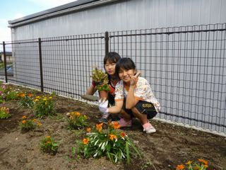 花壇flower.jpg